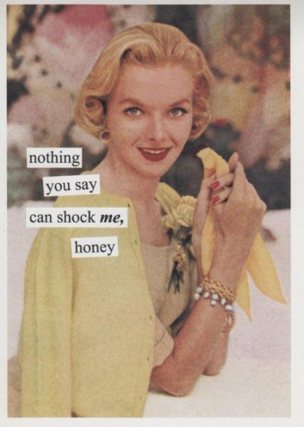 nothing you say can shock me honey: Vintage, Court Reporter, Truth, Quote, Anne Taintor, Funny, Humor, Shock