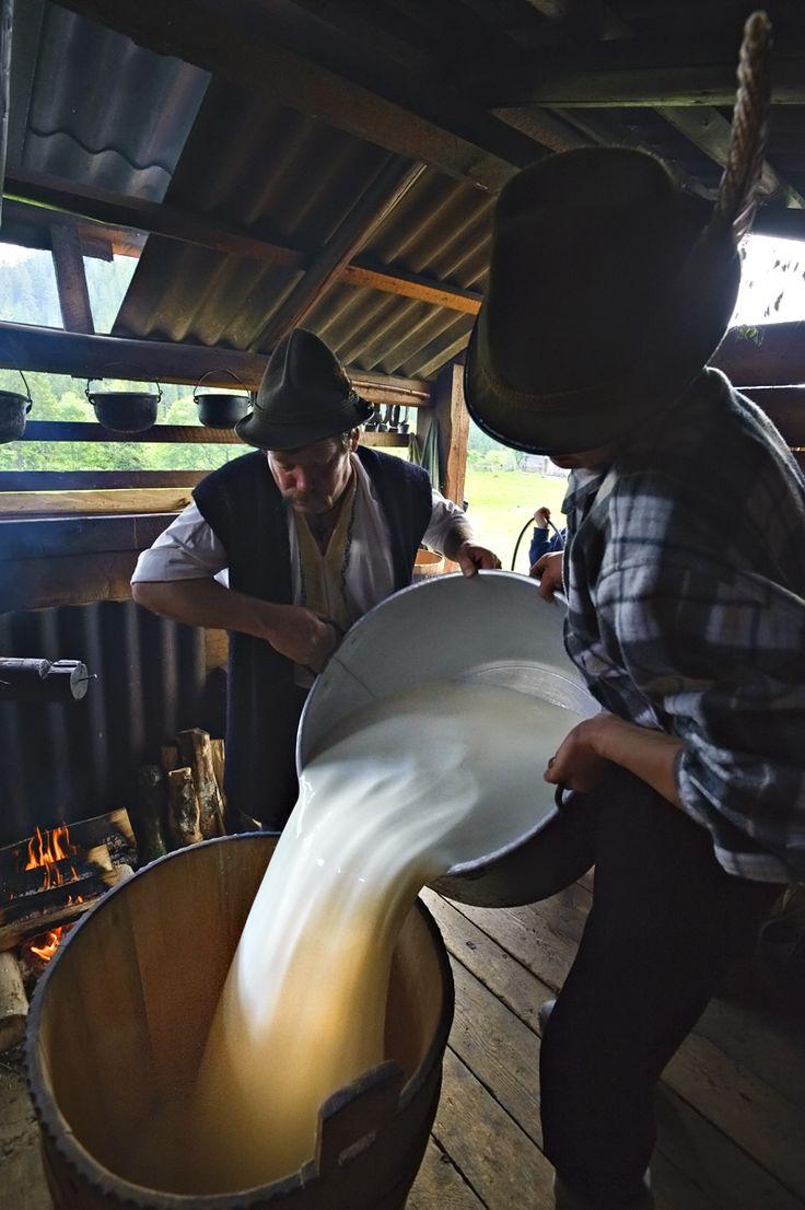 Making cheese in Bukovina, La stana, Bucovina, Blog-ul lui Mihai Moiceanu