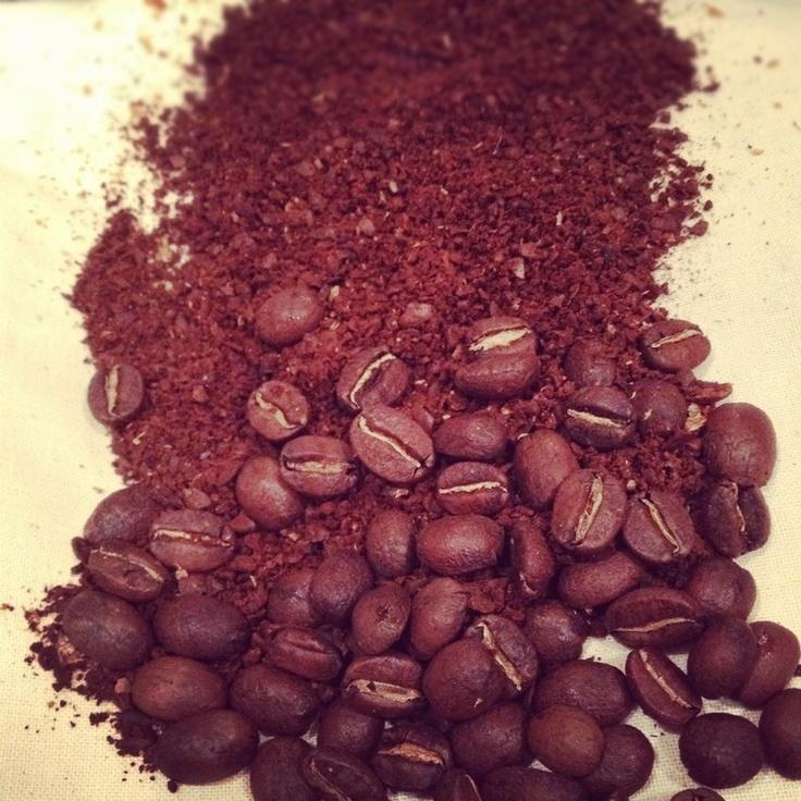 47++ Whole bean coffee adalah trends