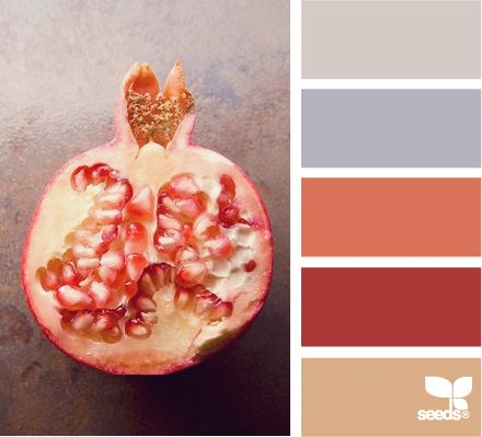 pomegranate huesColors Pallets, Design Seeds, Pomegranates Hues, Design Ideas, Living Room, Bathroom Wall, Colors Palettes, Colors Schemes, Bonus Room