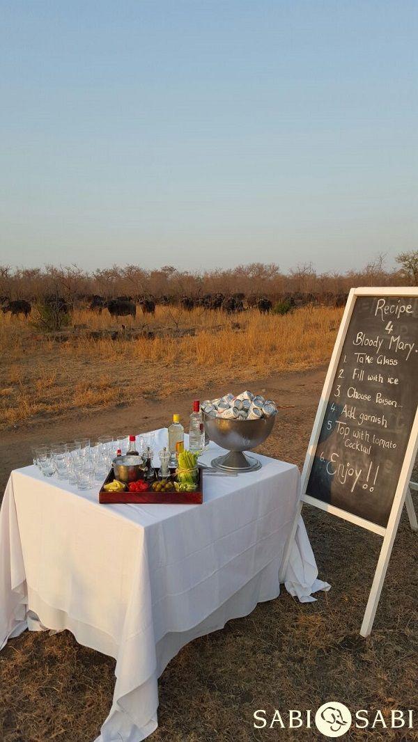 Happening now! A surprise Bloody Mary Stop awaits Earth Lodge guests on safari...and some thirsty buffalo...!   PhonePic by Nadia Schoeman.