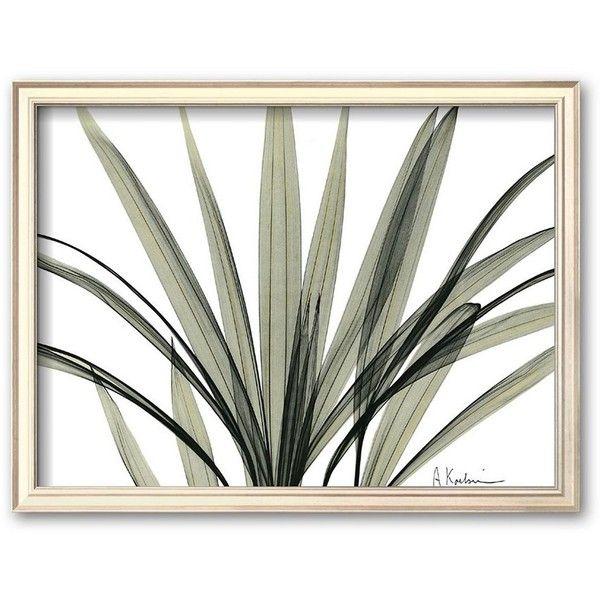 39 39 mini palm tree 39 39 framed art print by albert koetsier 134 liked on polyvore. Black Bedroom Furniture Sets. Home Design Ideas
