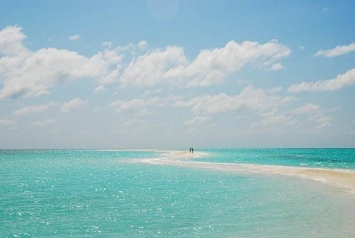 tropical heaven :-)