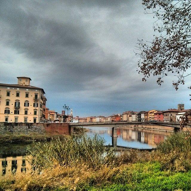 Usciti dalla palude. Arno, Pisa (Italy) © Valentino Liberto