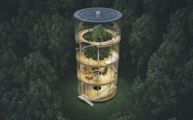 L'albero in casa, un rifugio dal caos quotidiano La casa è costituita da un cilindro vitreo che racchiude una serie di anelli, ciascuno dei quali corrispondente a un piano e a determinate funzioni dell'abitazione. Al centro si innalza, con tutta l' #abete #albero #foresta #legno #pietra