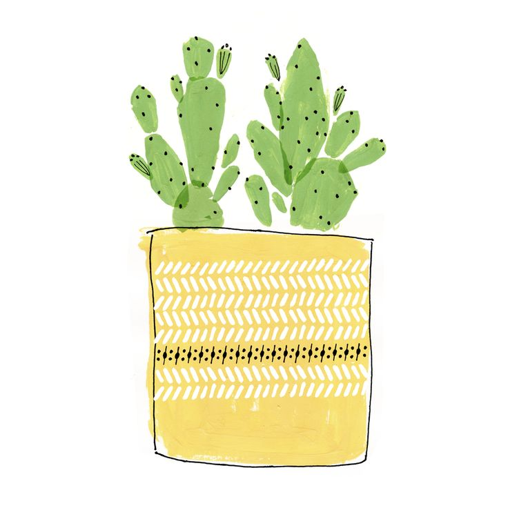 little cactus  8 x 10 limited run art print [ limited – 25 prints ]  a gift for your home or a friend!  by Cece