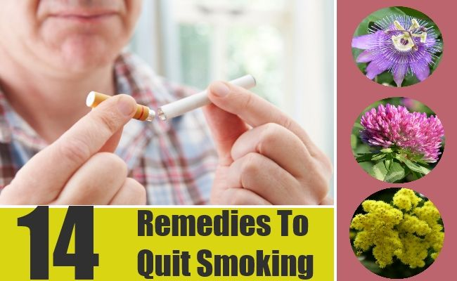 Want To Quit Smoking....? Red Clover, passion fruit, ginseng, st john's wart, mimosa, peppermint, ginger, clove oil, burdock root, wild oat, lobelia oil, etc.