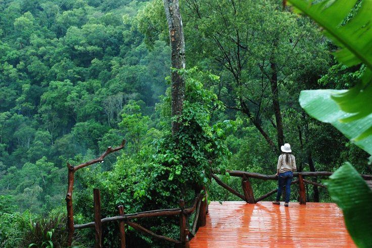 Selva Misionera. Argentina Tacuapi Lodge, Salto Encantado, provincia de Misiones