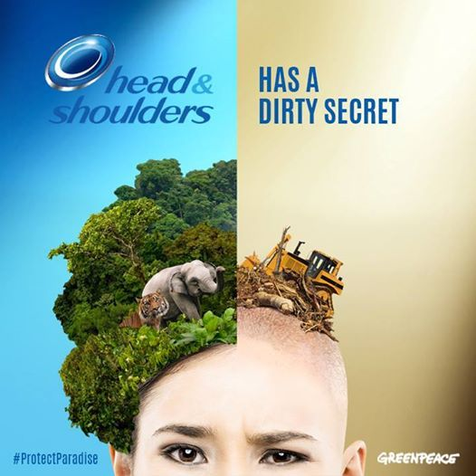 SPEAK OUT!  Since its parent company Procter & Gamble buys palm oil from companies that are destroying Indonesia's rainforests, Head & Shoulders can't guarantee that their products are free from forest destruction.   Discover the truth & TAKE ACTION: >>>