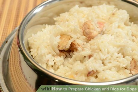 Image titled Prepare Chicken and Rice for Dogs Step 11