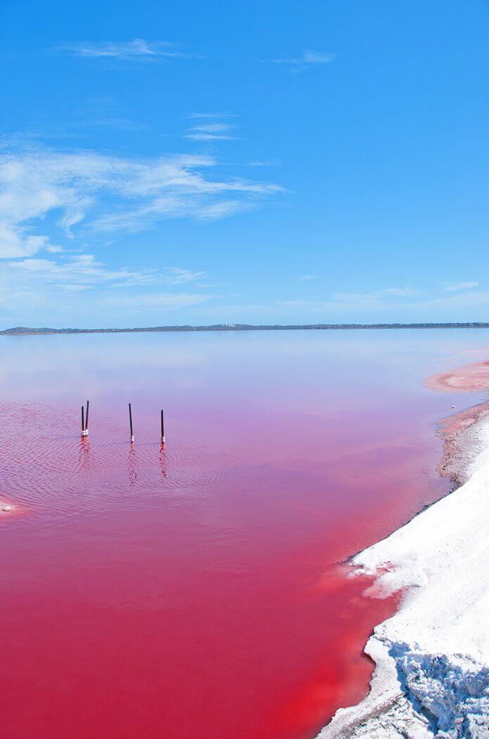 Pink Lake, Western Australia