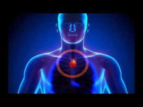 Божественное Сердце -Вилочковая железа - Ченнелинг Метатрон - YouTube