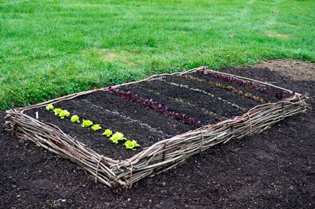 How To Build 5 Different Raised Beds: Organic Gardening. How To Build A  Wattle Raised Bed.