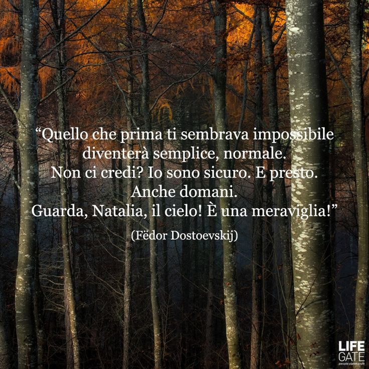Le citazioni più belle per sempre #4 - LifeGate