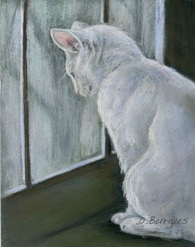 White Cat In A Window Pastel by Della Burgus, painting by artist Art Helping Animals