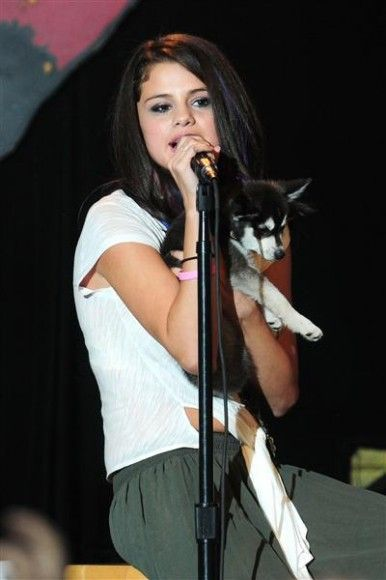 Diamonds are a girl's best friend, right? But for Selena Gomez, her best friend is a husky pup!
