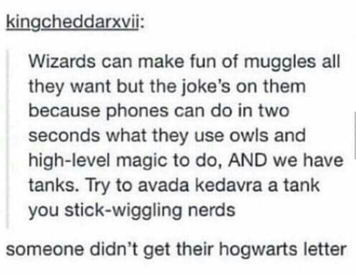 Either way, witches/wizards are still better because they have brooms, quidditch, hogwarts, butterbeer, and the best pranksters of all time.