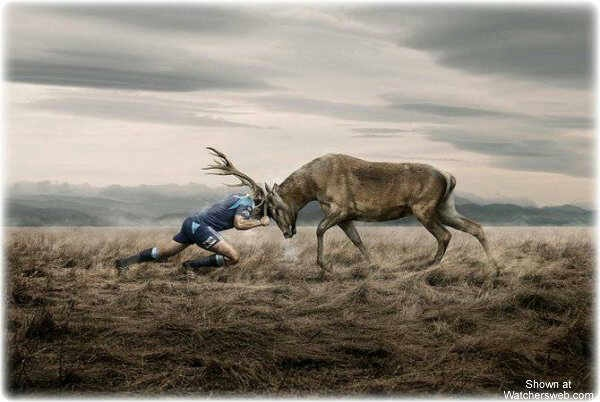 The Bulls are the best! (Blue Bulls, Rugby)