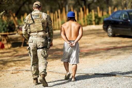 California law enforcement readies for new marijuana laws - Tampabay.com