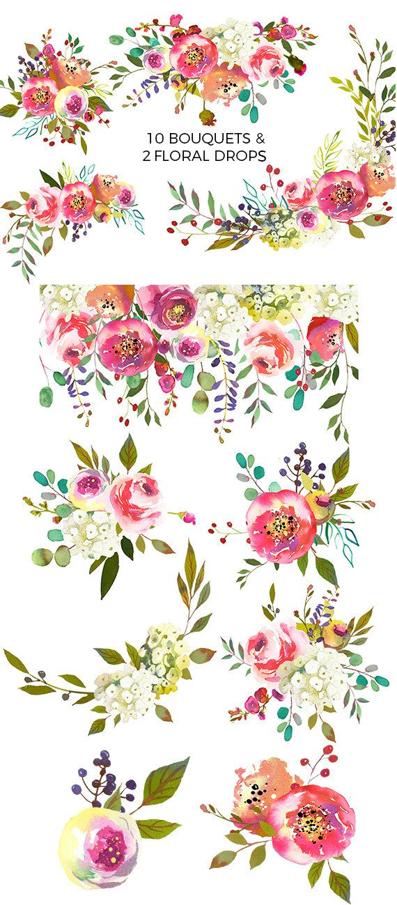 Pink Peach Flowers Peonies Roses Watercolor Clipart White ...
