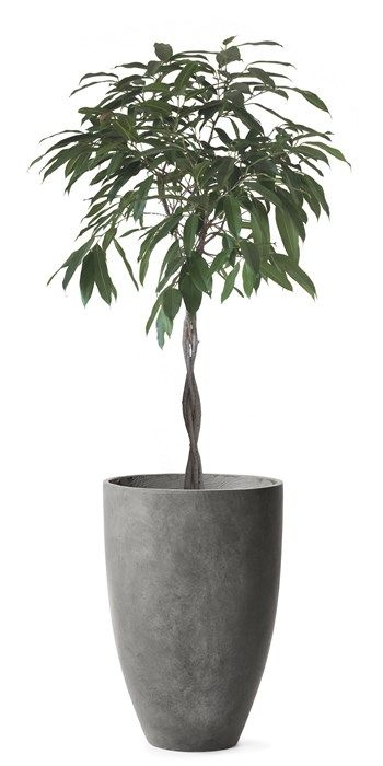 Maya Kruka Grå cement 249 - 349:- mio möbler