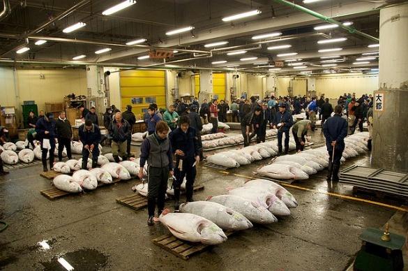Tsukiji Market, Tokyo, Japan - One of the world's best food markets
