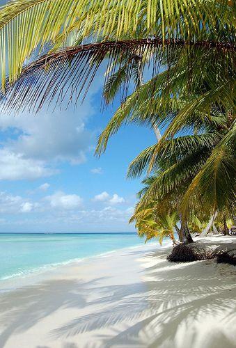 Île de saona - république dominicaine