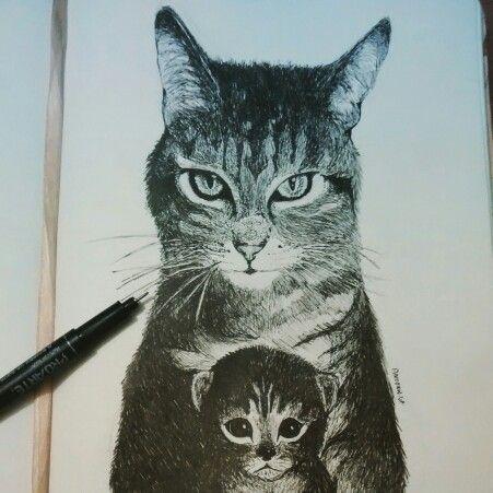 Gato terminado