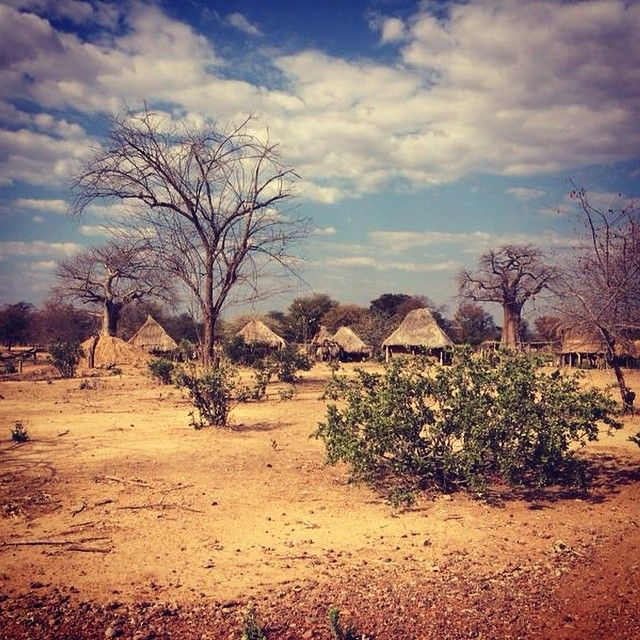 Good Wednesday to everyone! today we share this beautiful landscape of #Zambia #nature #greenlife #sky
