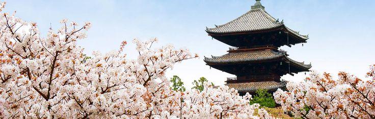 Ninna-ji Temple - Japan National Tourism Organization