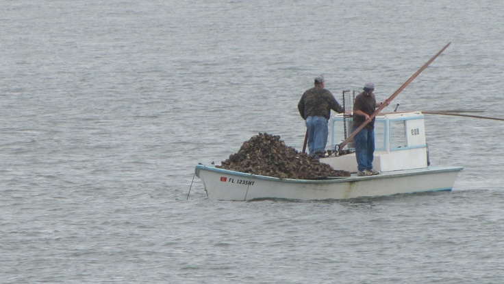 174 best Wood Crab Boats and the sort... images on