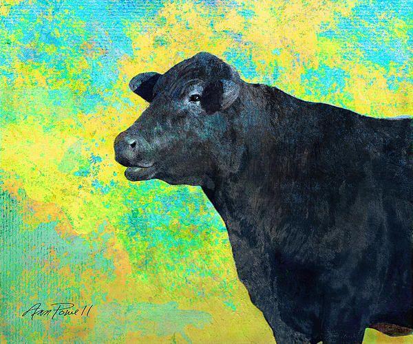 Animals Cow Black Angus  Mixed Media