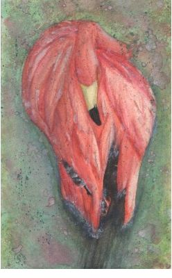 weeklyanal2. Flamingo #waterpaint #birds #hotpink