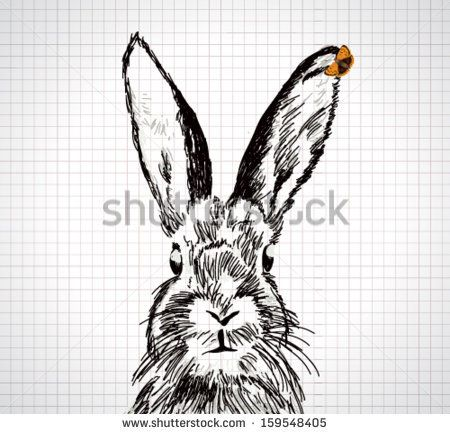 Adorable Hand Drawn Rabbit With Vector Butterfly
