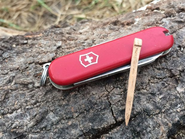 Replacement Toothpick For A Swiss Army Knife Swiss Army