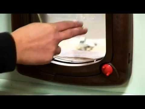 Chatière staywell pour chat à 4 positions et à fonctionnement magnétique - PetSafe - YouTube