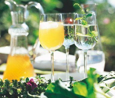 Rabarber- och tequilastarter är en bedårande dryck med exotiska smaker. Smakerna är intensiva och blir svalkande och uppfriskande en varm sommardag. Dekorera med grann mynta och färsk frukt.