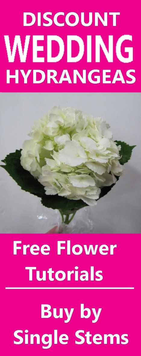9 best tropical wedding flowers images on pinterest bridal wholesale wedding flowers buy in single bunches learn how to make wedding bouquets junglespirit Images