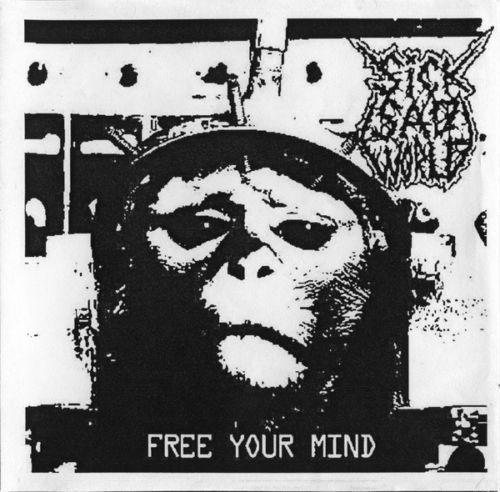 Sick Sad World : Free Your Mind 2x CD Grindcore Crust Limited to 150 copies | eBay