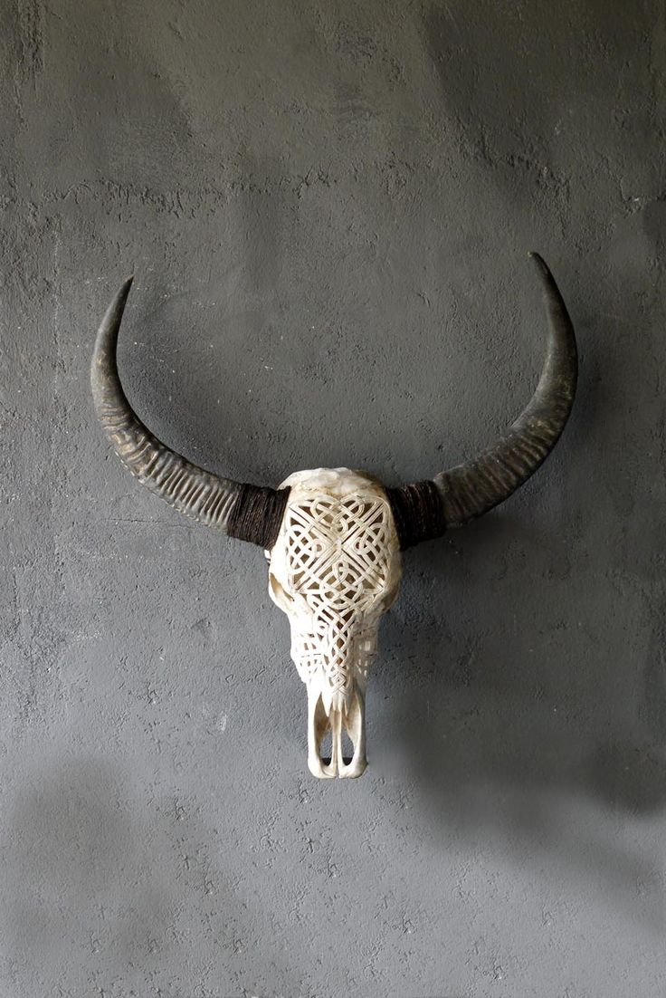 carved skull bone