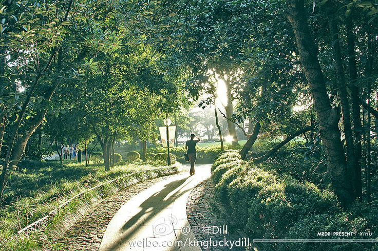 Hangzhou travel