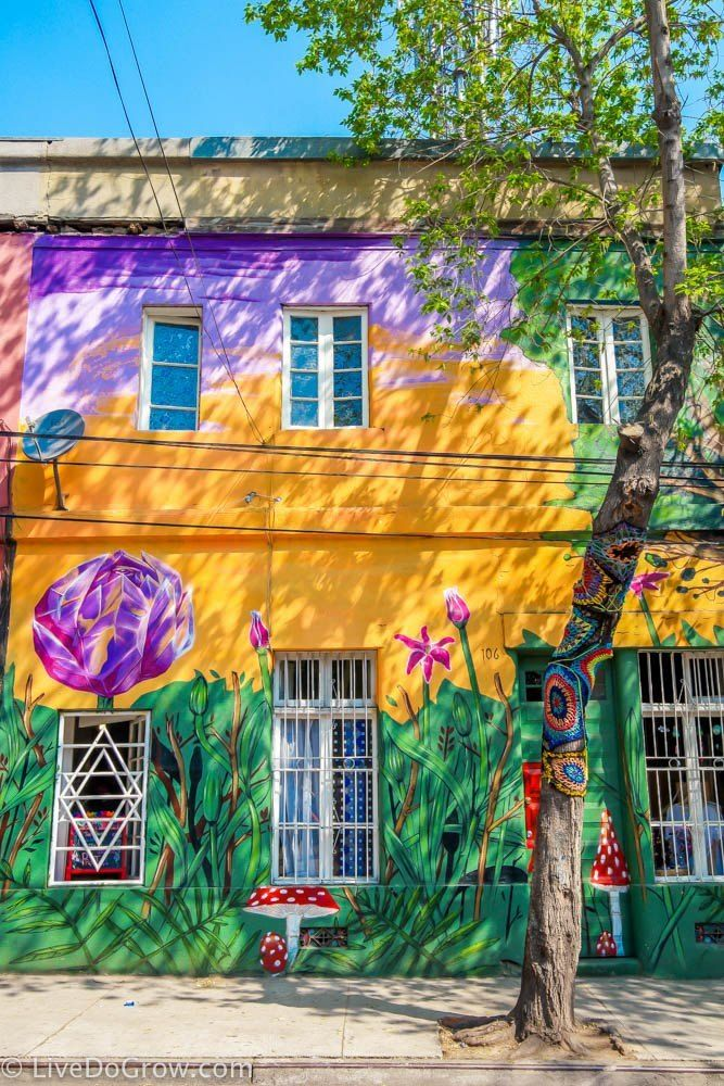 Take a walking tour of murals in the Barrio Bellavista of Santiago, Chile.