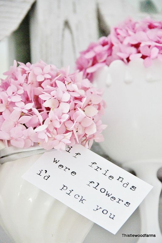 How to Make Your Hydrangeas Bloom - Thistlewood Farm