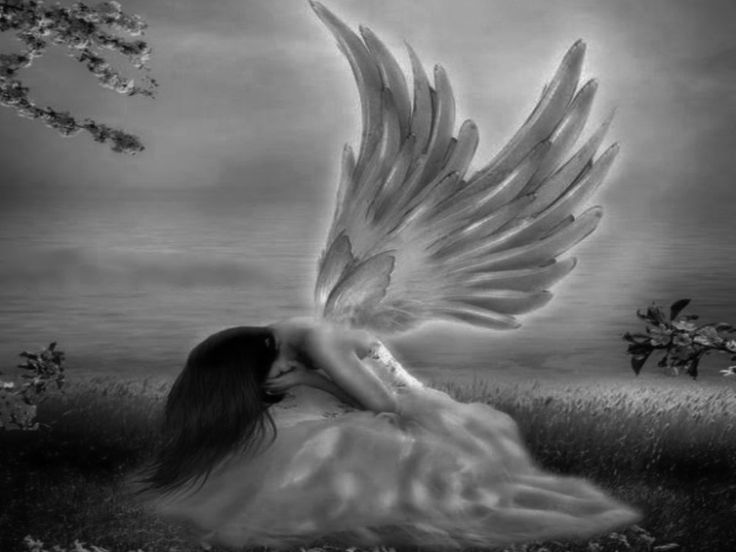 17 best images about angels on pinterest angels among us angel pictures and wings - Sad angel wallpaper ...