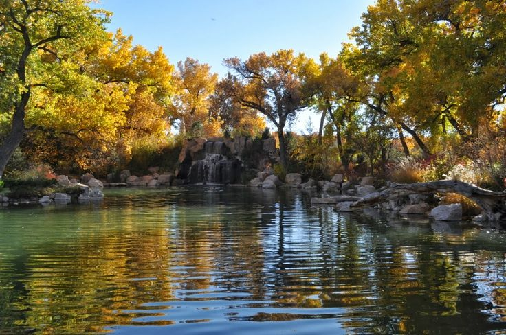 40 Best Images About Abq Metro Parks Open Spaces On Pinterest Gardens Parks And Acre