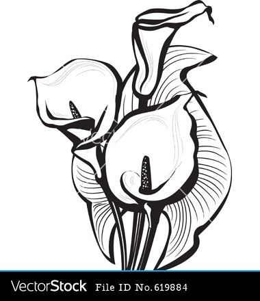 calla lily tattoo pictures - Google Search