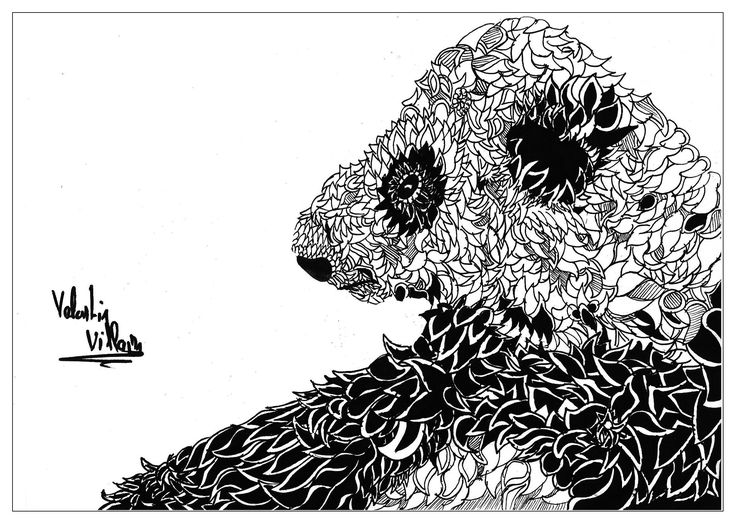 531 Best Images About Coloring Pages To Print