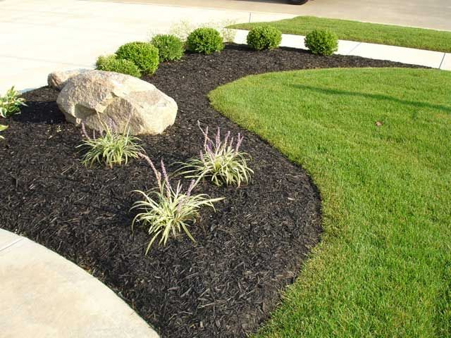 Using black mulch as a highlight in landscaping your yard.