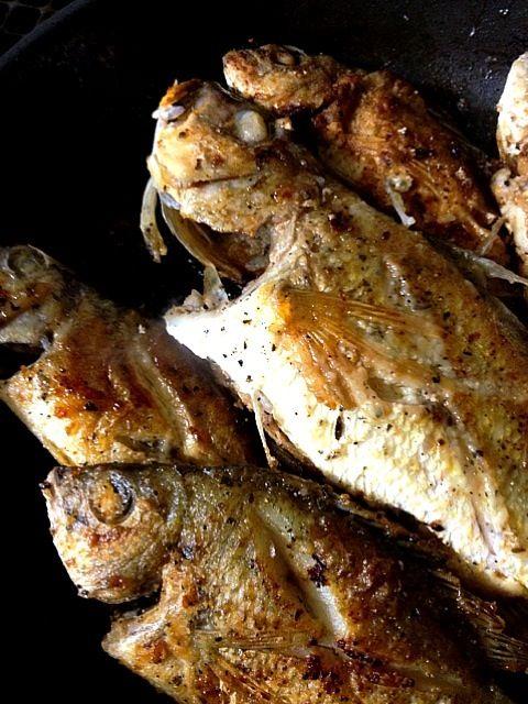 釣れたて…新鮮なのだ‼    まぁ〜さい‼ - 48件のもぐもぐ - 南黒鯛 (チンのバター焼き‼ by chokoringu3