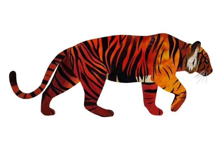 Collage Tiger illustration by wildlife illustrator, Jonathan Woodward. #Collage #Tiger